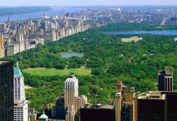 New York: skyscrapers threaten central park environmentalists alert
