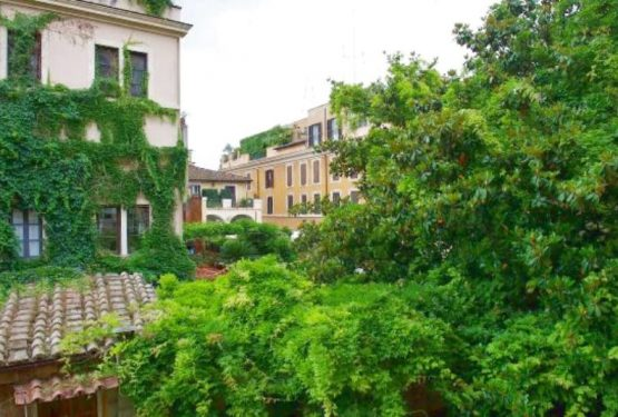 Artist's studio fos sale in Rome.Exclusive apartment in the prestigious Patrizi Nari Palazzo