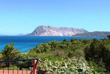 Nuova vendita in Sardegna