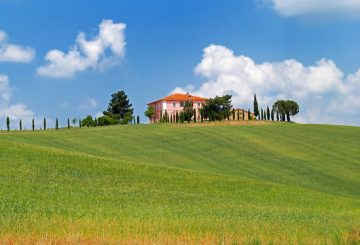 Buying a winery in Tuscany. The secret of a right choice.