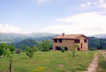 BOOMING ACTIVITY OF GREAT ESTATE IN MARCHE REGION