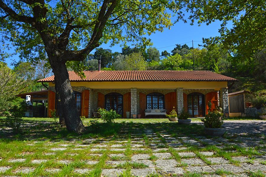 vpge002578 Monte del Lago Magione Perugia