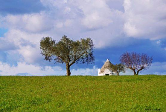 Apulia: the Itria Valley extraordinary beauties