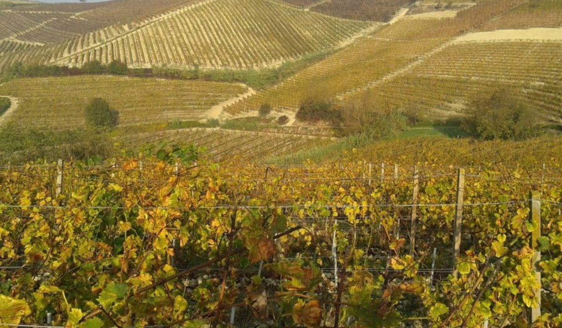 Il Piemonte: patrimonio italiano