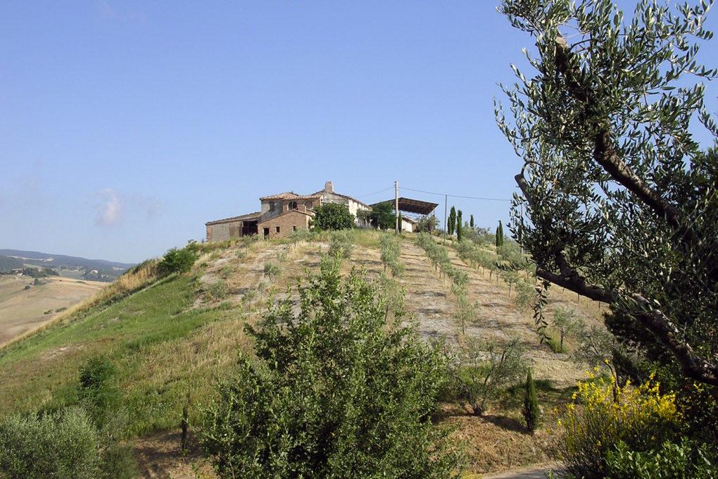 """""""Il Panorama delle Crete"""": make your dream come true"""