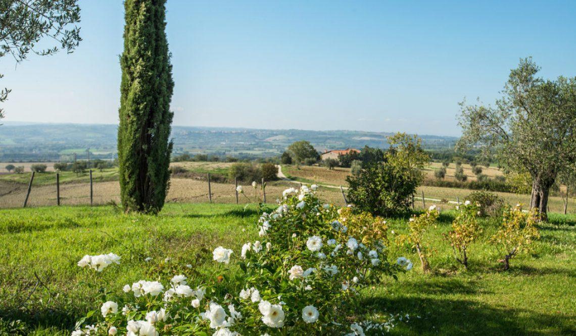"""Una vera oasi di benessere e natura vicino ad Orvieto: """"Podere Del Poggio"""""""
