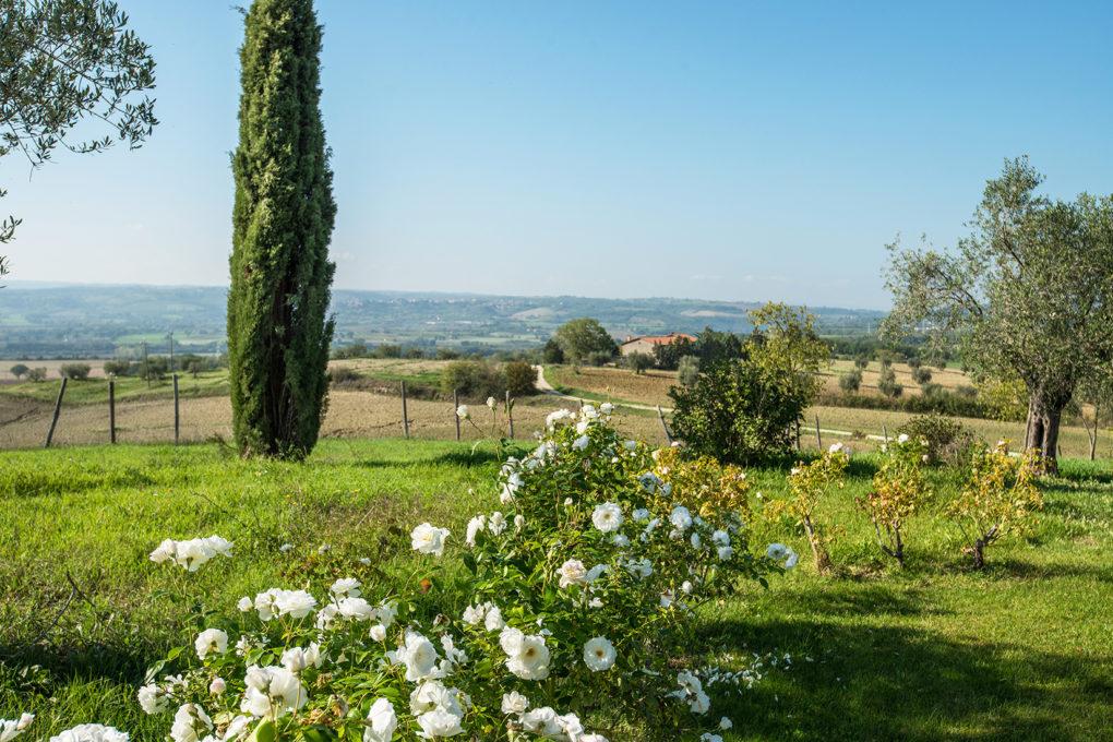 """A real wellness and nature oasis near Orvieto: """"Podere Del Poggio"""""""