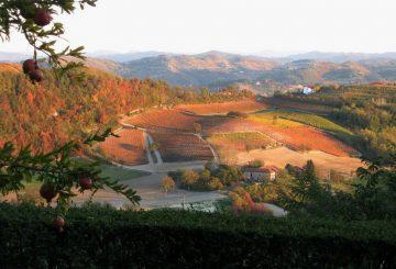 """Un antico casale dolcemente adagiato tra i colli dell'Alto Monferrato: """"Cascina Olmo"""""""