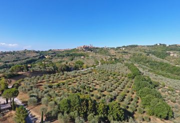An oasis among the olive trees and overlooking Città Della Pieve: Il Borgo Delle Grazie Toscane