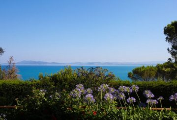 The Argentario coast and its beating heart: Porto Santo Stefano