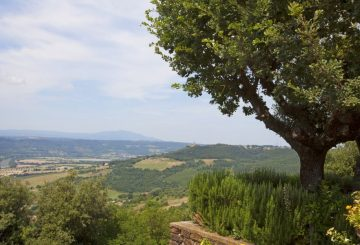 "Great Estate and the sale of ""Villa El Olivar"", Umbria"