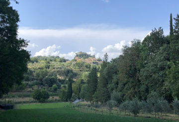 """A country estate in a walk distance from the historic centre of Cetona: """"Il Podere Di Campagna"""""""