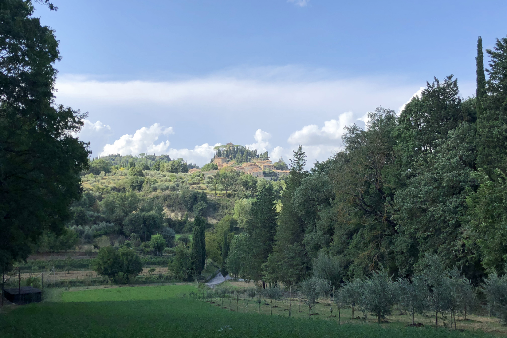 "A country estate in a walk distance from the historic centre of Cetona: ""Il Podere Di Campagna"""