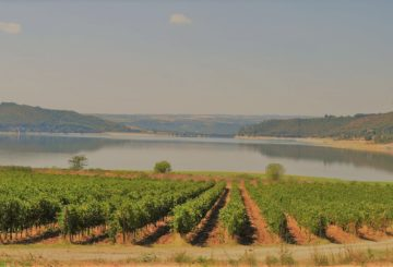 Corbara Lake in Umbria: nature, landscape and… A beautiful G.E. farmhouse