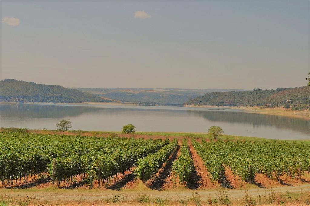 Il lago di Corbara in Umbria: natura, paesaggi e…