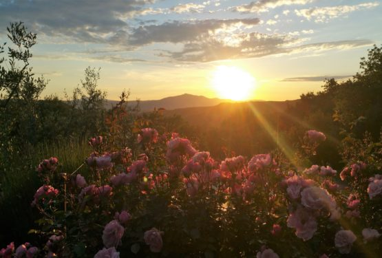 "Between Umbria and Tuscany, the stunning ""Tramonto A Parrano"" farmhouse location"