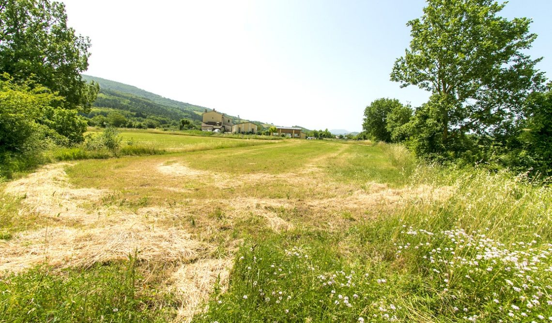 "In the core of the Marche region, ""Agriturismo Sito Archeologico"""
