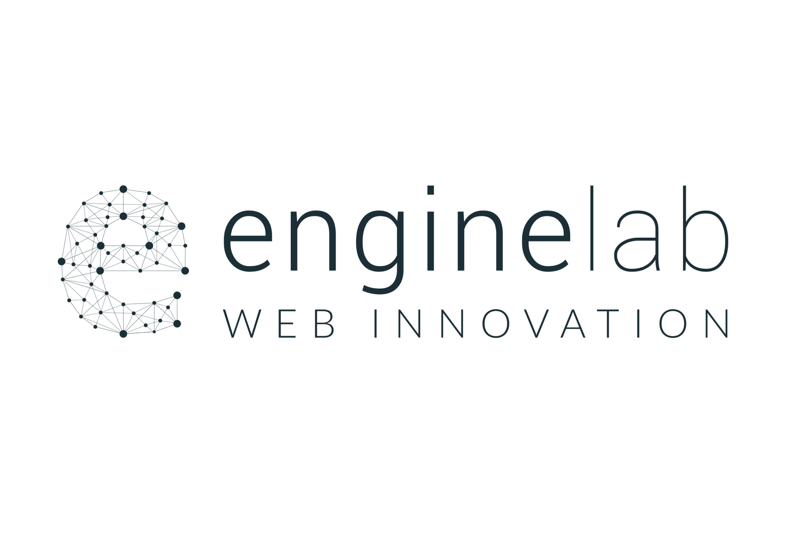 Web activities connected to the GE brand: the team of Engine Lab