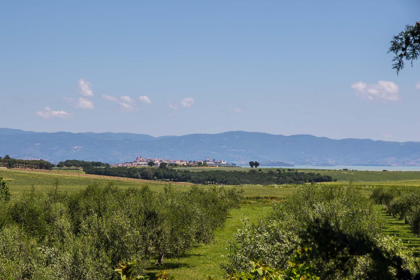 vendesi-rustico-casale-in-umbria-perugia-castiglione-del-lago-1590486660233